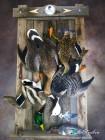 Купить битая дичь картина утки и гуси