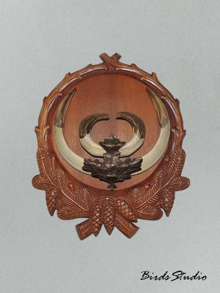Клыки кабана на медальоне